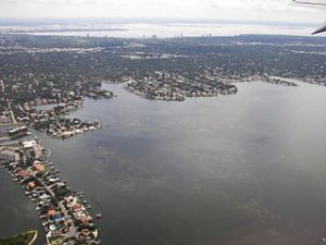 320px-Aerial_view_of_South_Tampa,_Florida