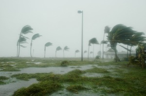 050709-N-0000B-004 Key West, Fla. (July 10, 2005) Ð Hurricane Dennis batters palm trees and floods parts of Naval Air Station (NAS) Key WestÕs Truman Annex. The storm passed within 125 miles of the base, clocking winds in excess of 90 miles an hour and dumping more than seven inches of rain before moving north through the Gulf of Mexico. U.S. Navy ships have been sortied out of Naval Station Pascagoula, with evacuation ordered for all but essential personnel from Naval Air Station Pensacola, Fla., ordered Friday, July 8. A day after the storm passed, power was back to more than three-quarters of the 428,000 Key West homes and businesses who had outages when Dennis' eye passed 125 miles to the west of the island a day earlier. Atlantic hurricane season began June 1 and ends Nov. 30. U.S. Navy photo by Jim Books (RELEASED)
