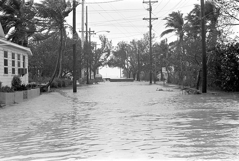Image result for hurricane betsy miami 1965